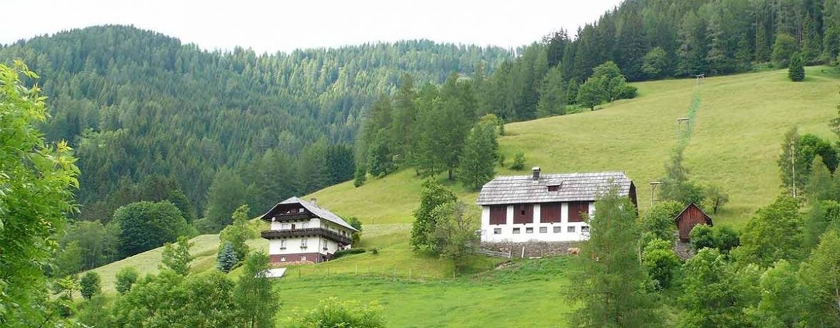 Ferienwohnungen Tischnerhof
